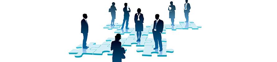 evaluari de organizatii