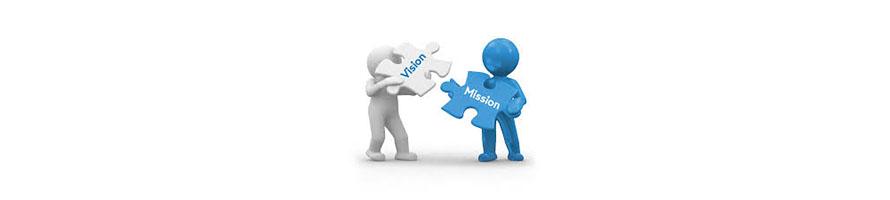 misiune-viziune-valori
